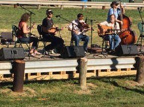 Fiddlers Picnic, 2016